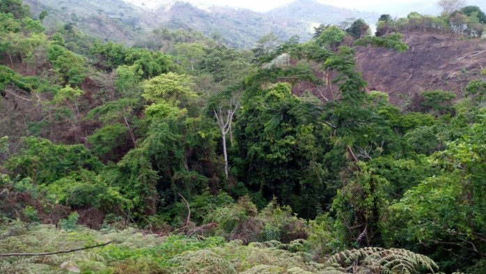Mahenge Liandu landscape